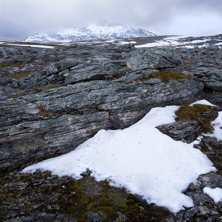 The last surviving snow from last year's snowfall, with rocks and a mountain in the background.