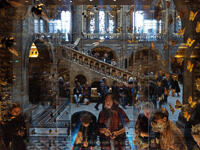 Visitors at the Natural History Museum in London examine a display of insects in Hintze Hall.